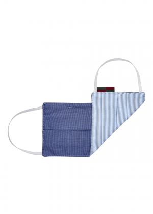 Stripe Blue Flat Mask